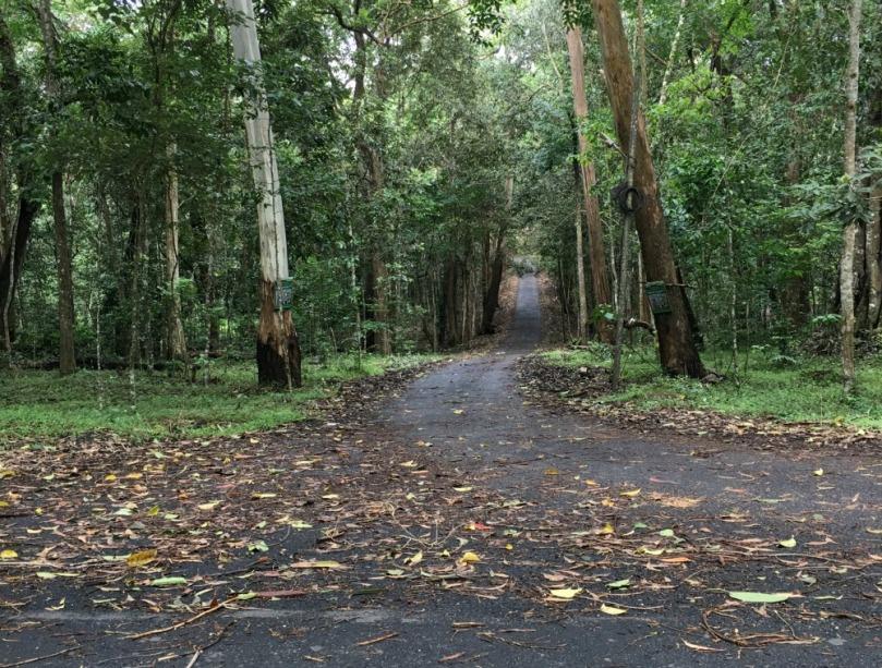 periyar forest.jpg