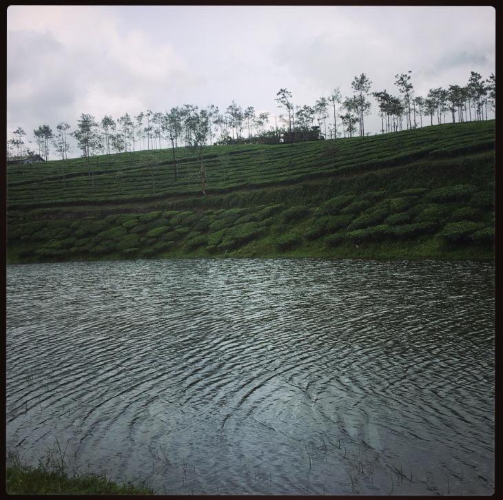 thekkady-lake
