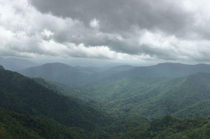Green mountain-Thekkady