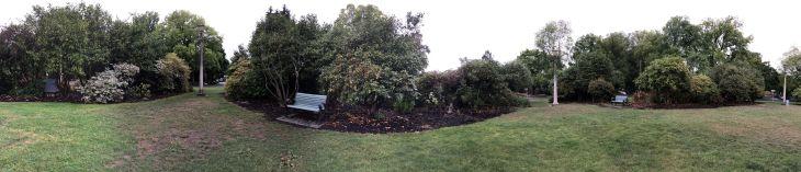 The barren garden