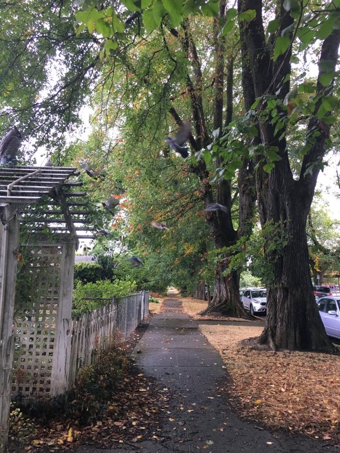 Ladd's Addition, Portland