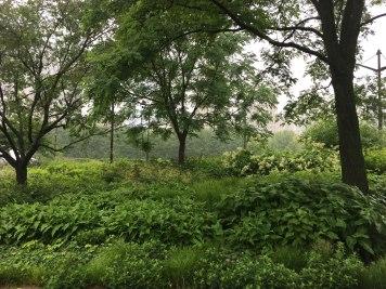 Lurie-Garden-1