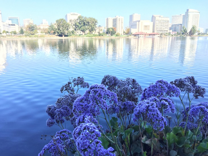 Lake Merrit, Oakland