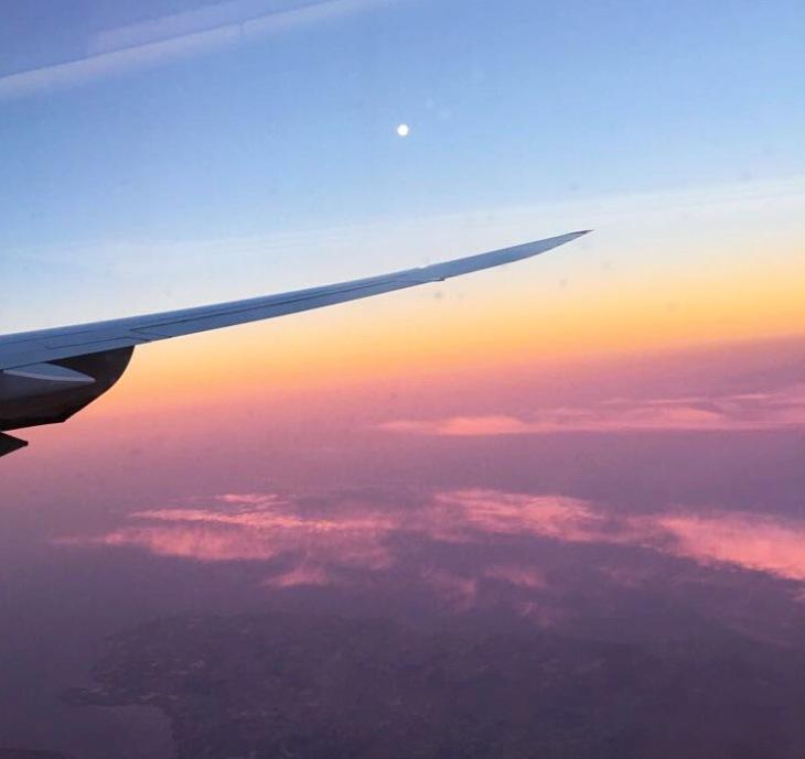 Soaring the skies