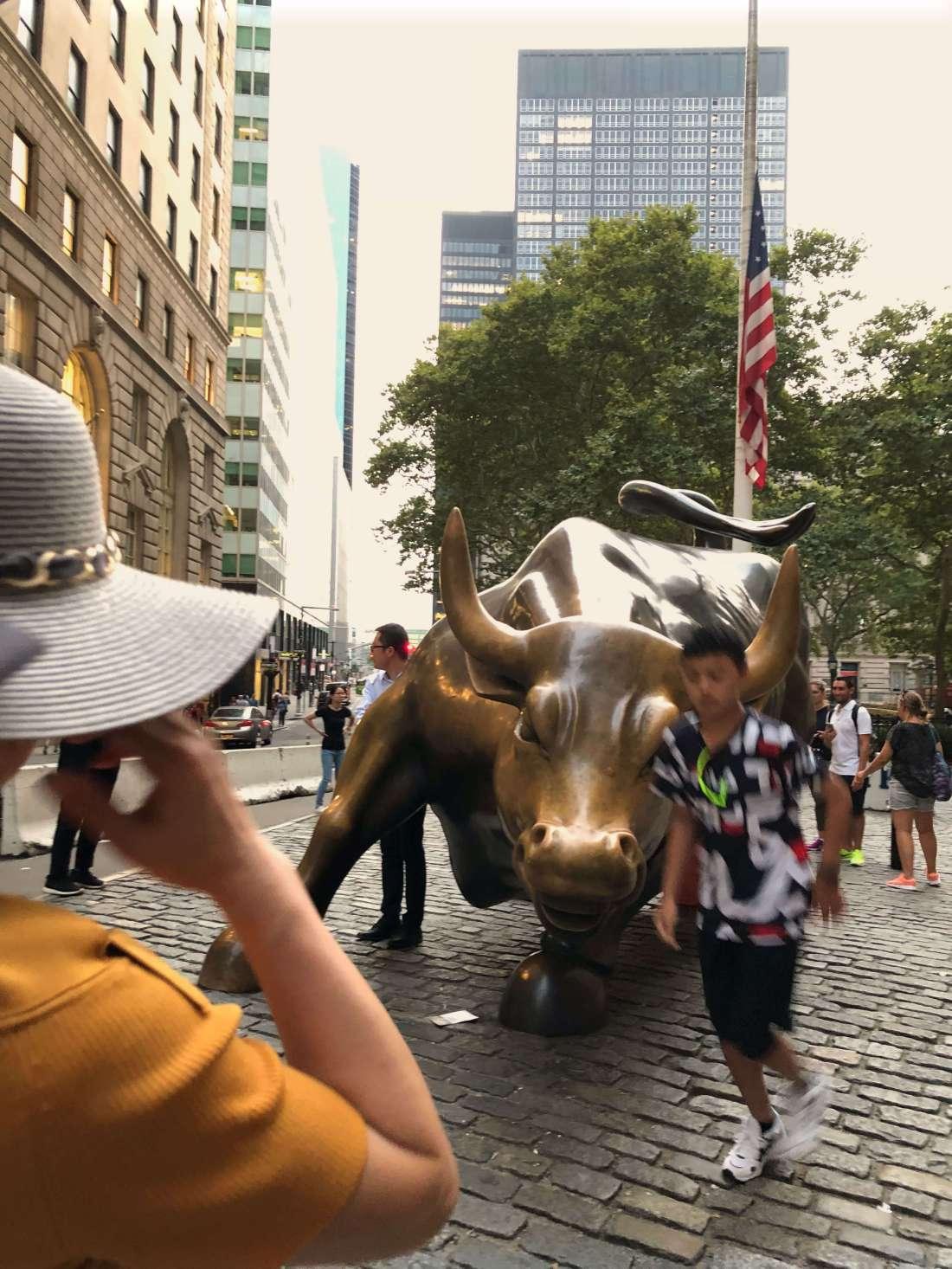 The Charging Bull, New York City
