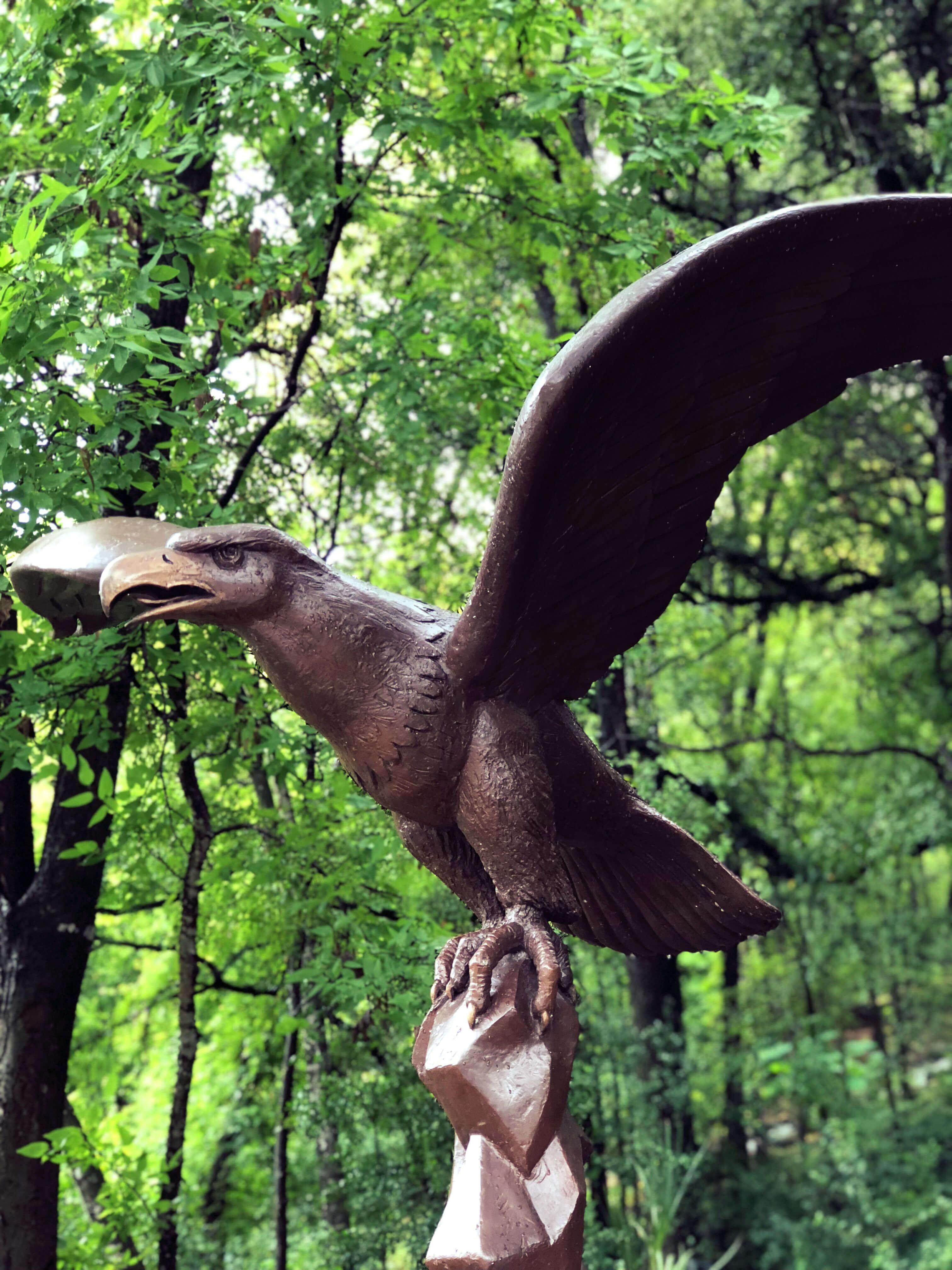 Eagle statue at the Umlauf Sculpture Garden in Austin, Texas