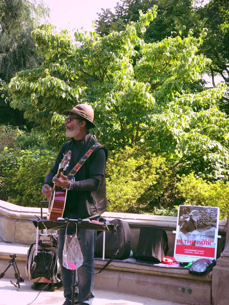 Musician in the park, Central Park in New York City