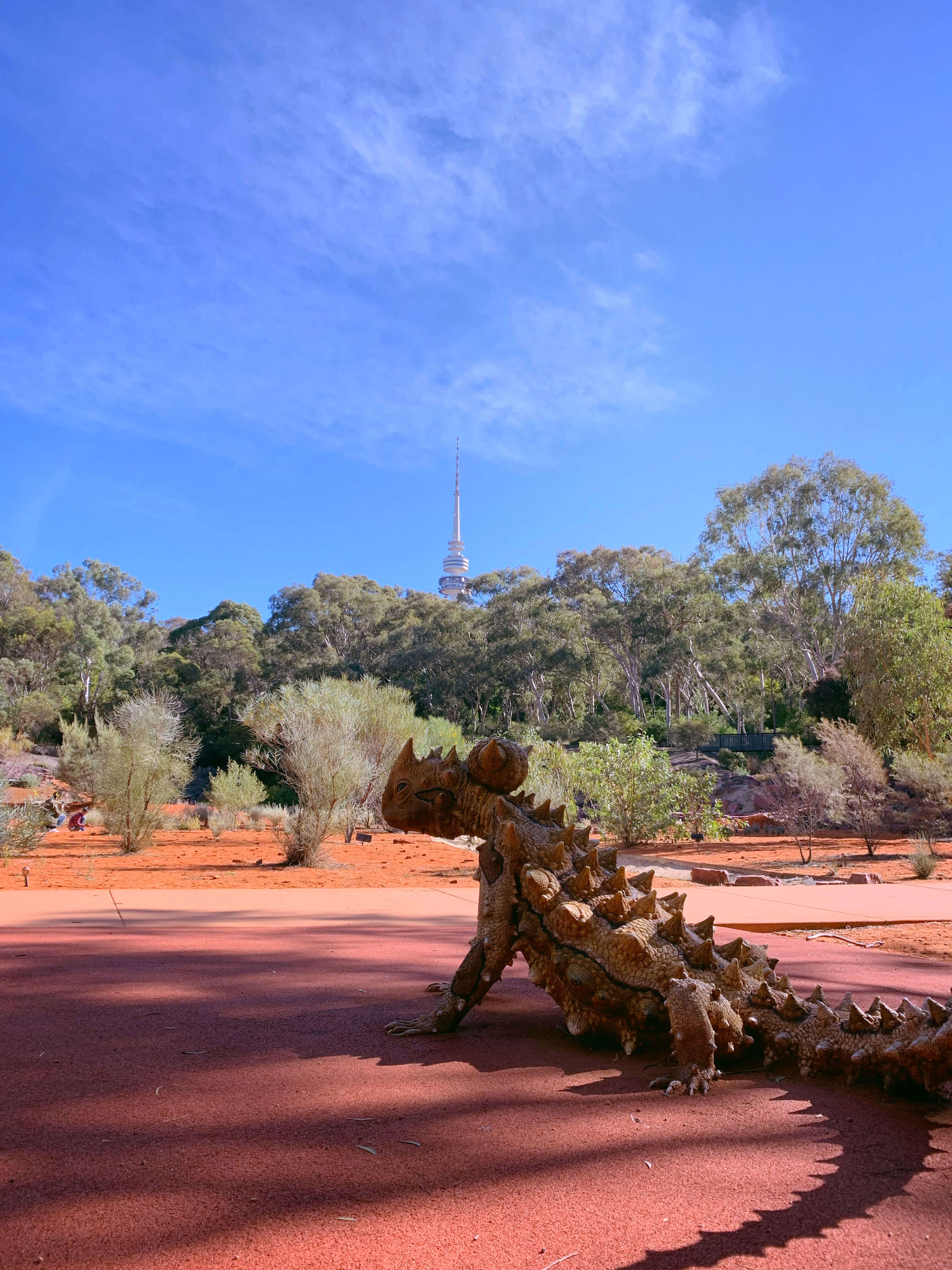 National Botanical Gardens - red centre garden