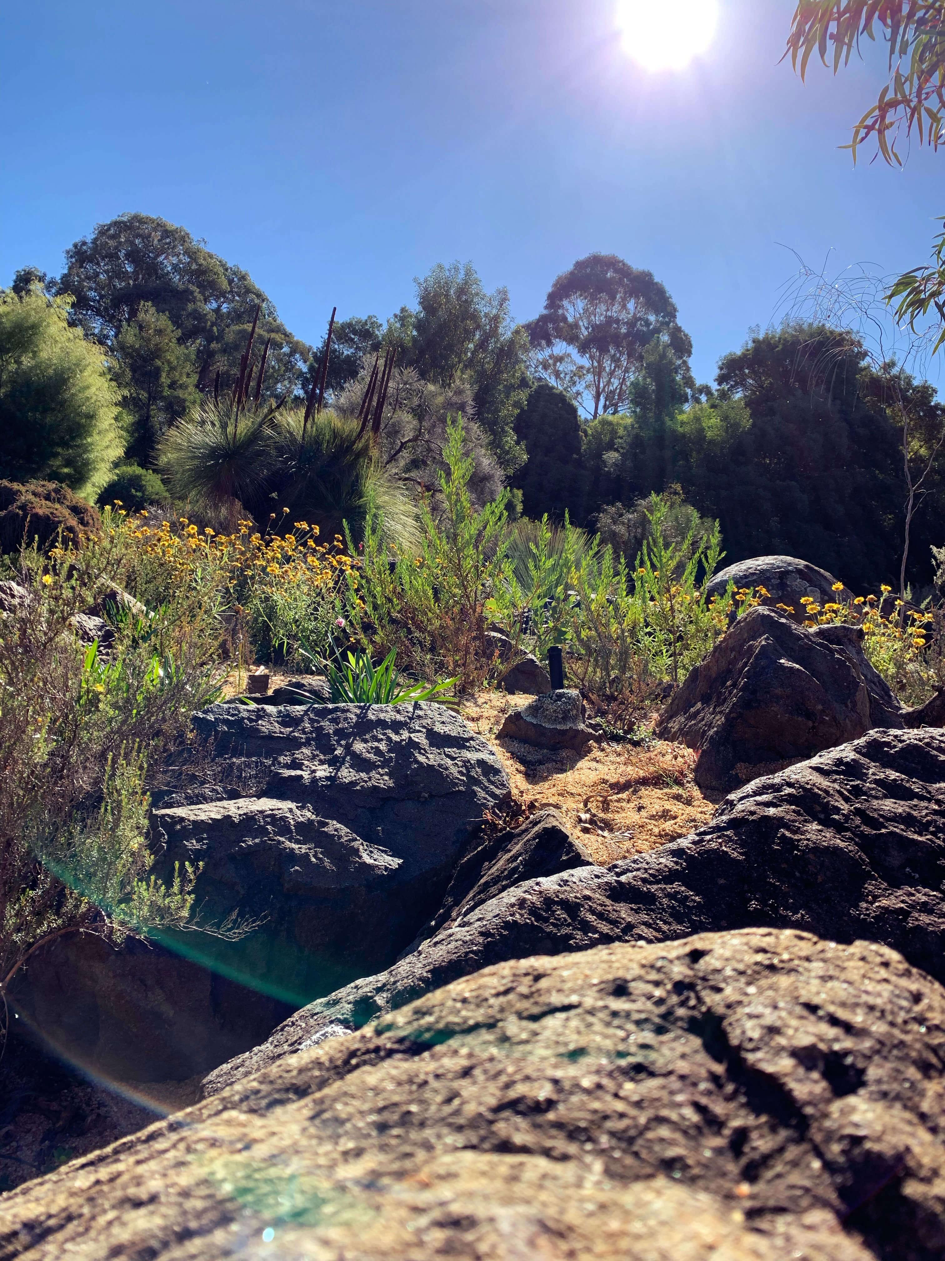 National Botanical Gardens - rock garden