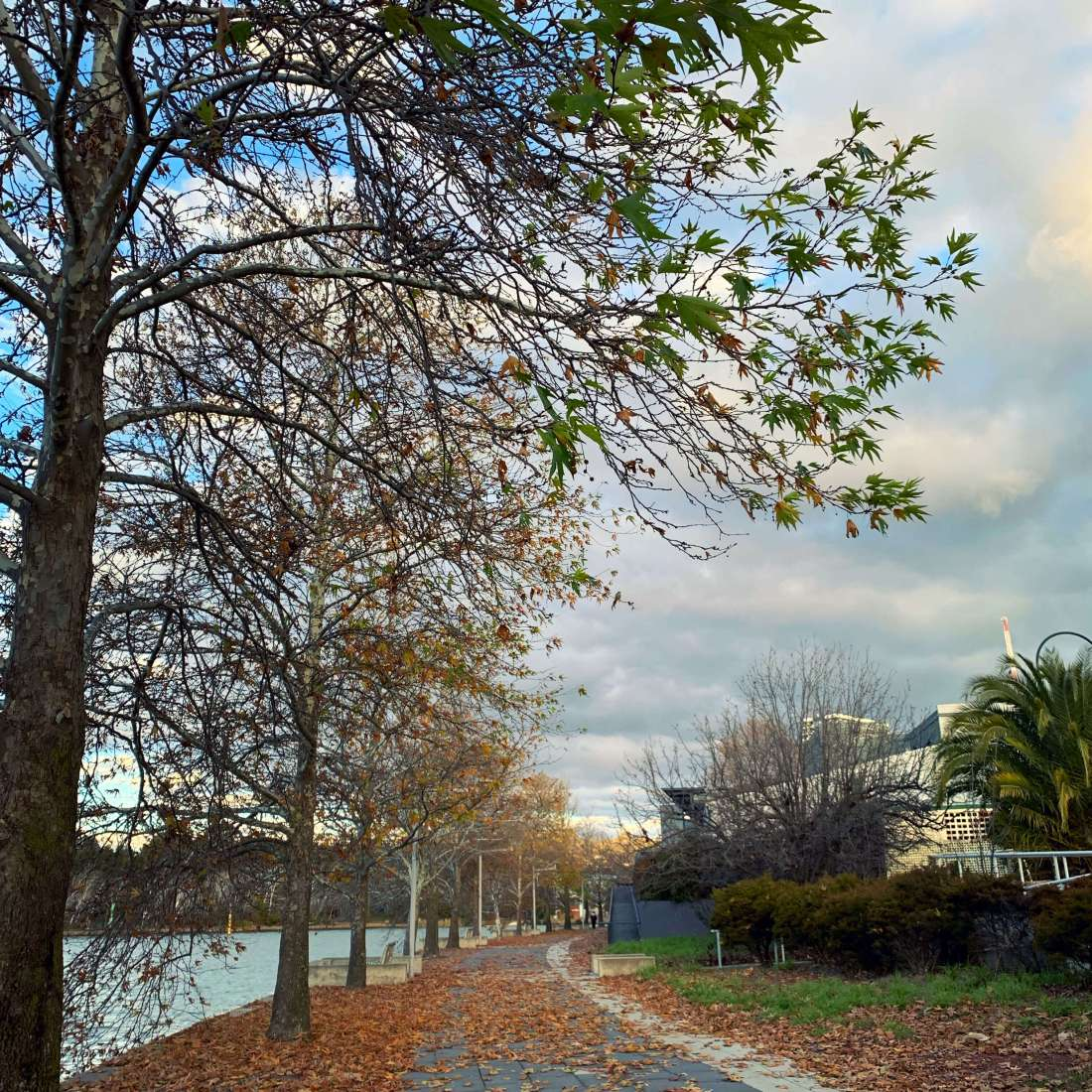 By Lake Ginninderra, Canberra