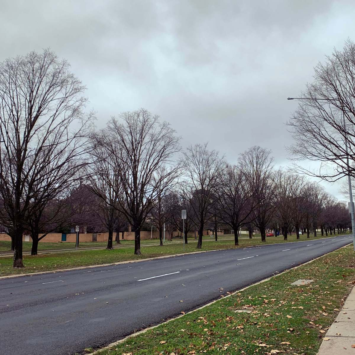 A windy, winter day in Canberra