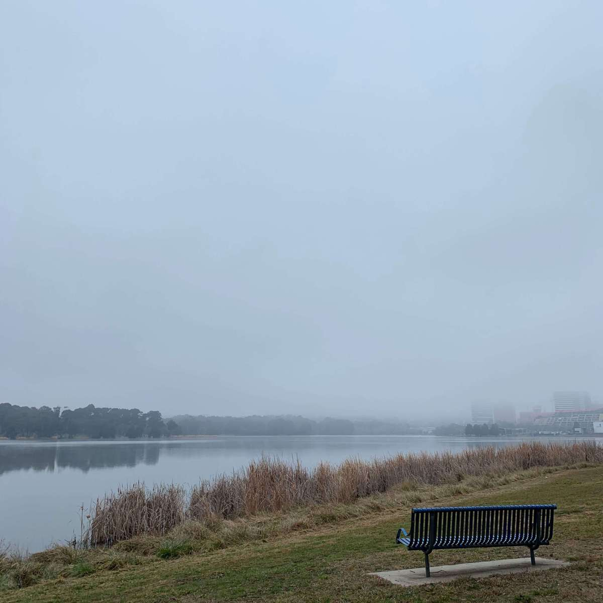 Foggy day by Lake Ginninderra, Canberra
