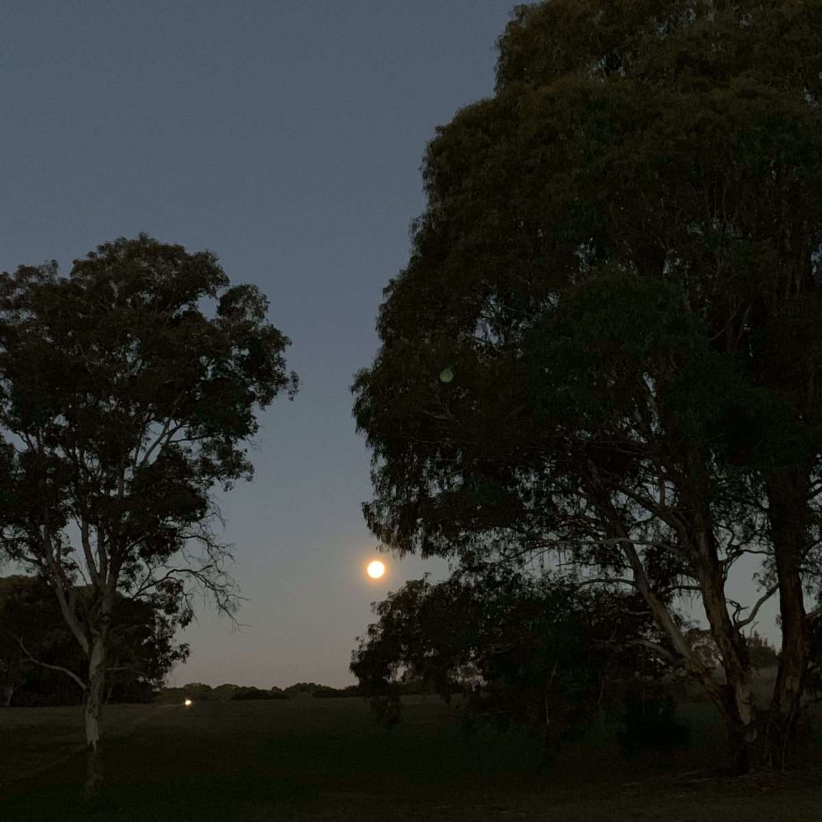 Full moon - Canberra
