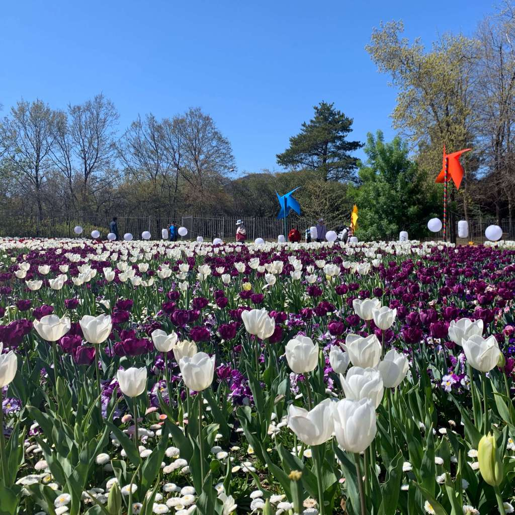 Floriade 2019 in Canberra