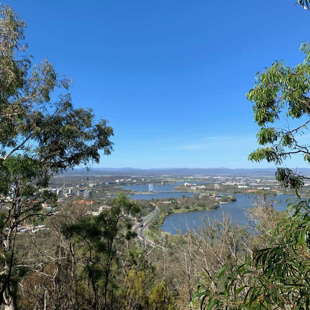 Canberra city, as seen from Mount Ainslie