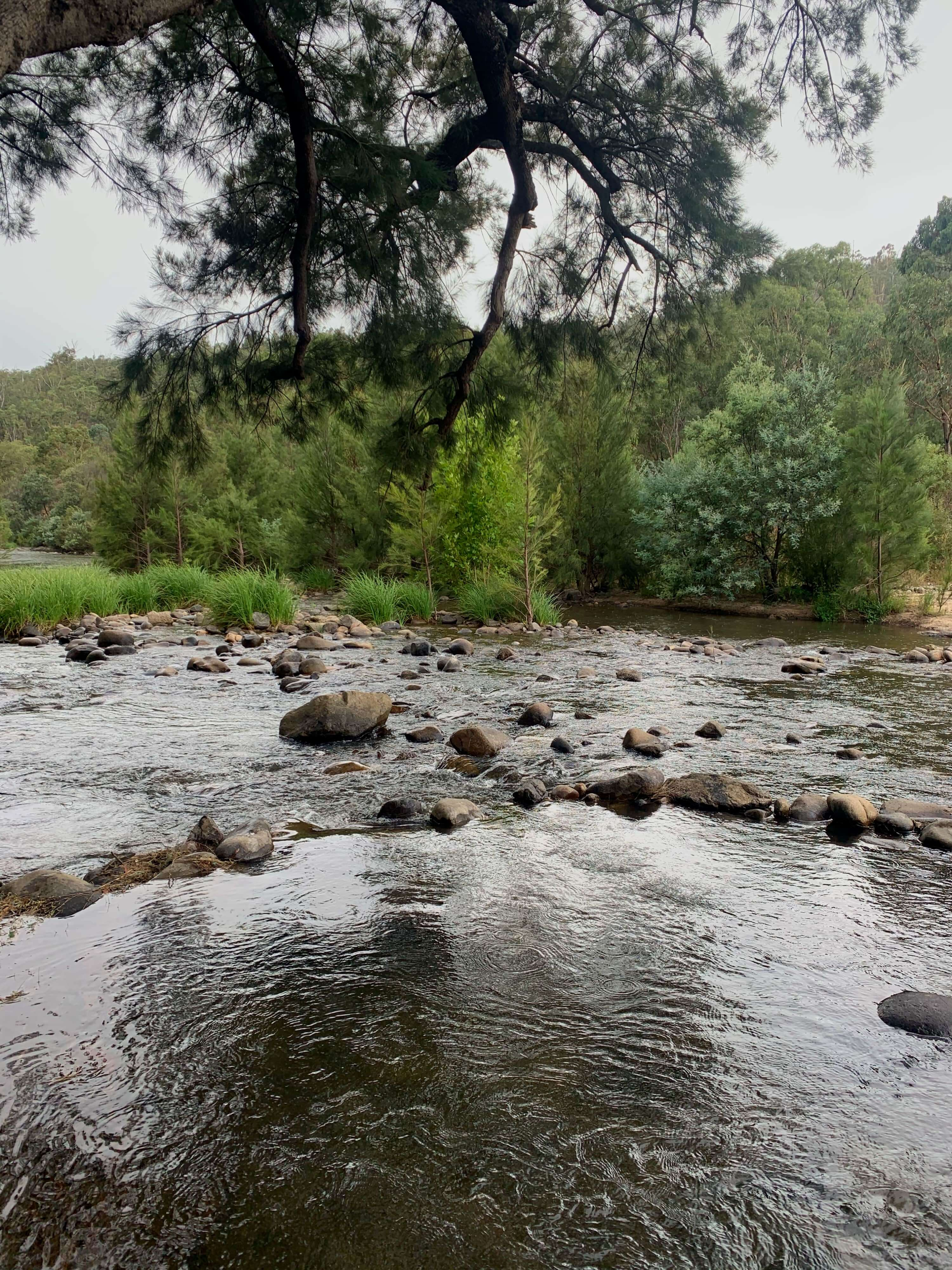 Cotter river, outskirts of Canberra