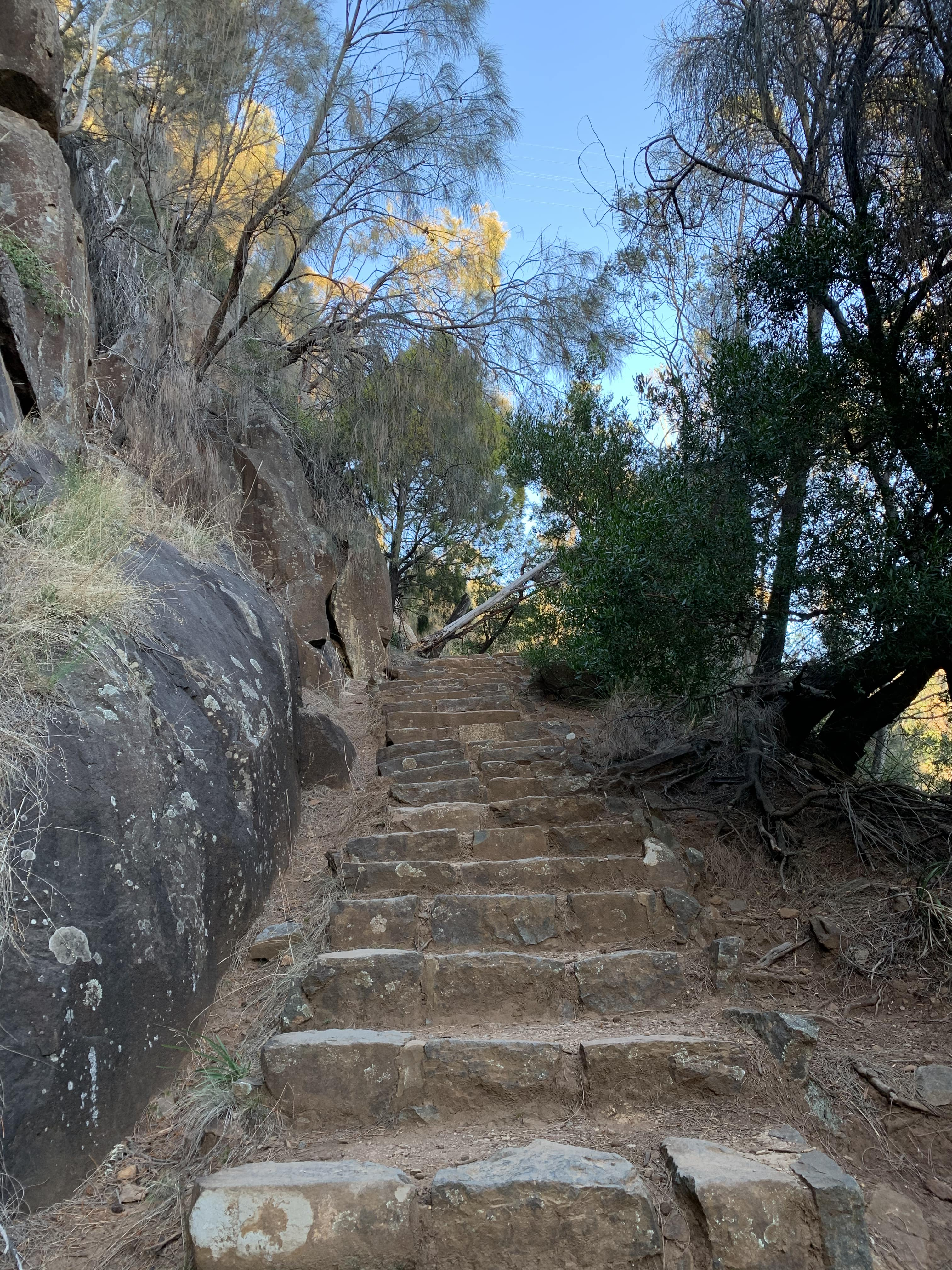 Zig Zag Trail, Launceston, Tasmania