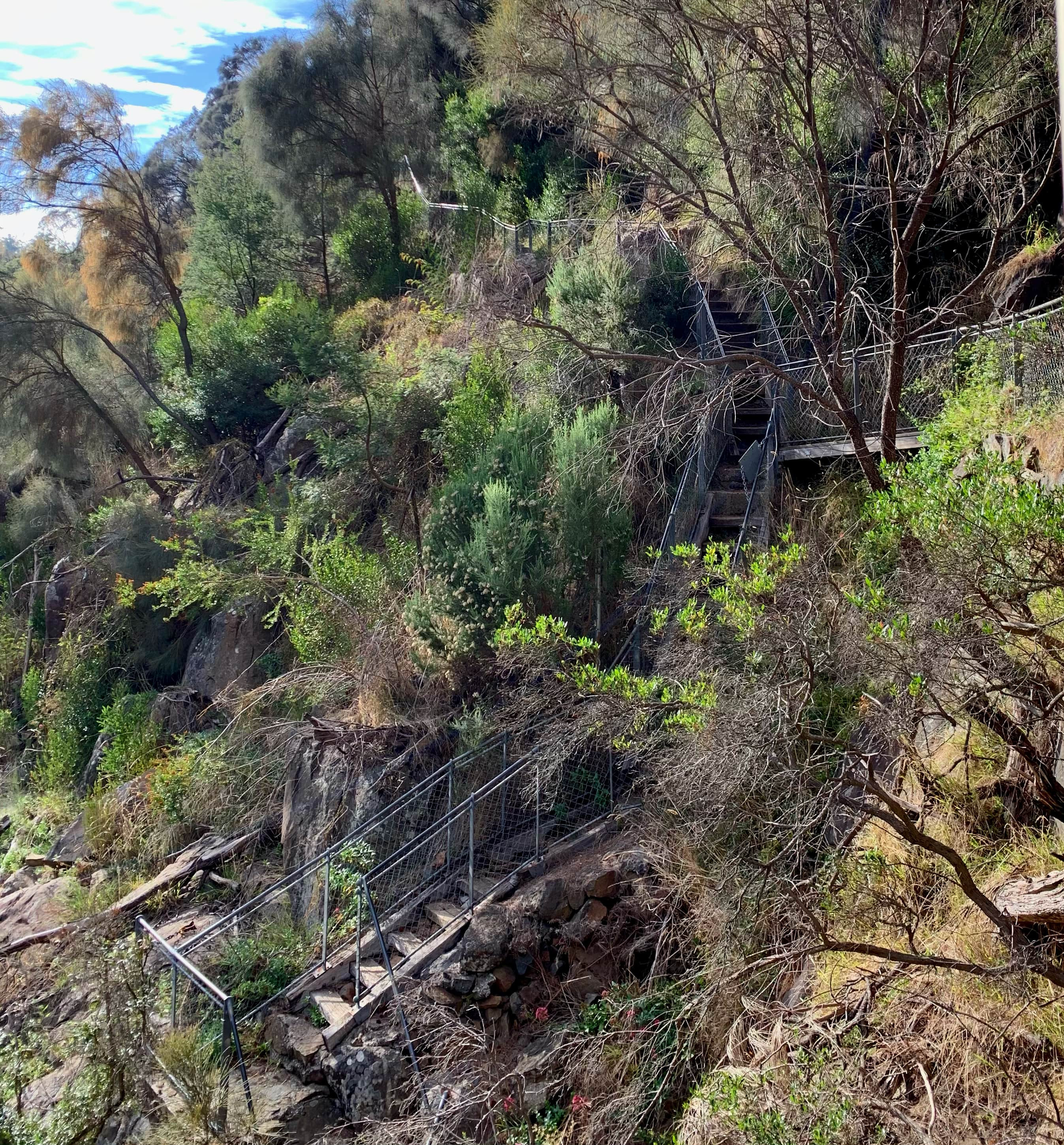 image of a walking steps trail in the Cataract Gorge, Launceston, Tasmania