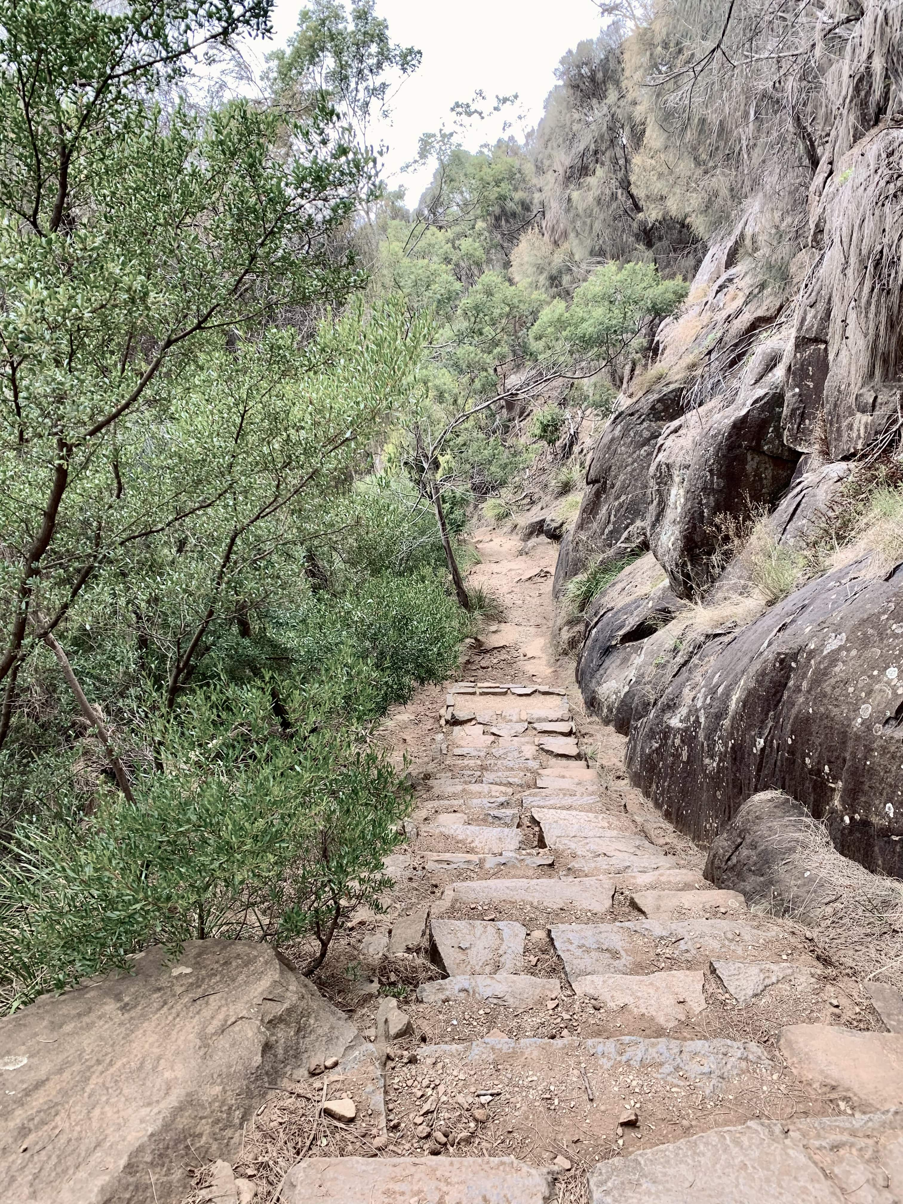 Zig Zag Trail in the Cataract Gorge in Launceston, Tasmania