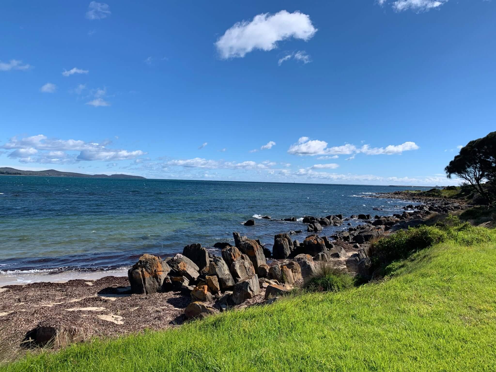 photo of the ocean and some of the green lawn by the shore - George Town, Tasmania