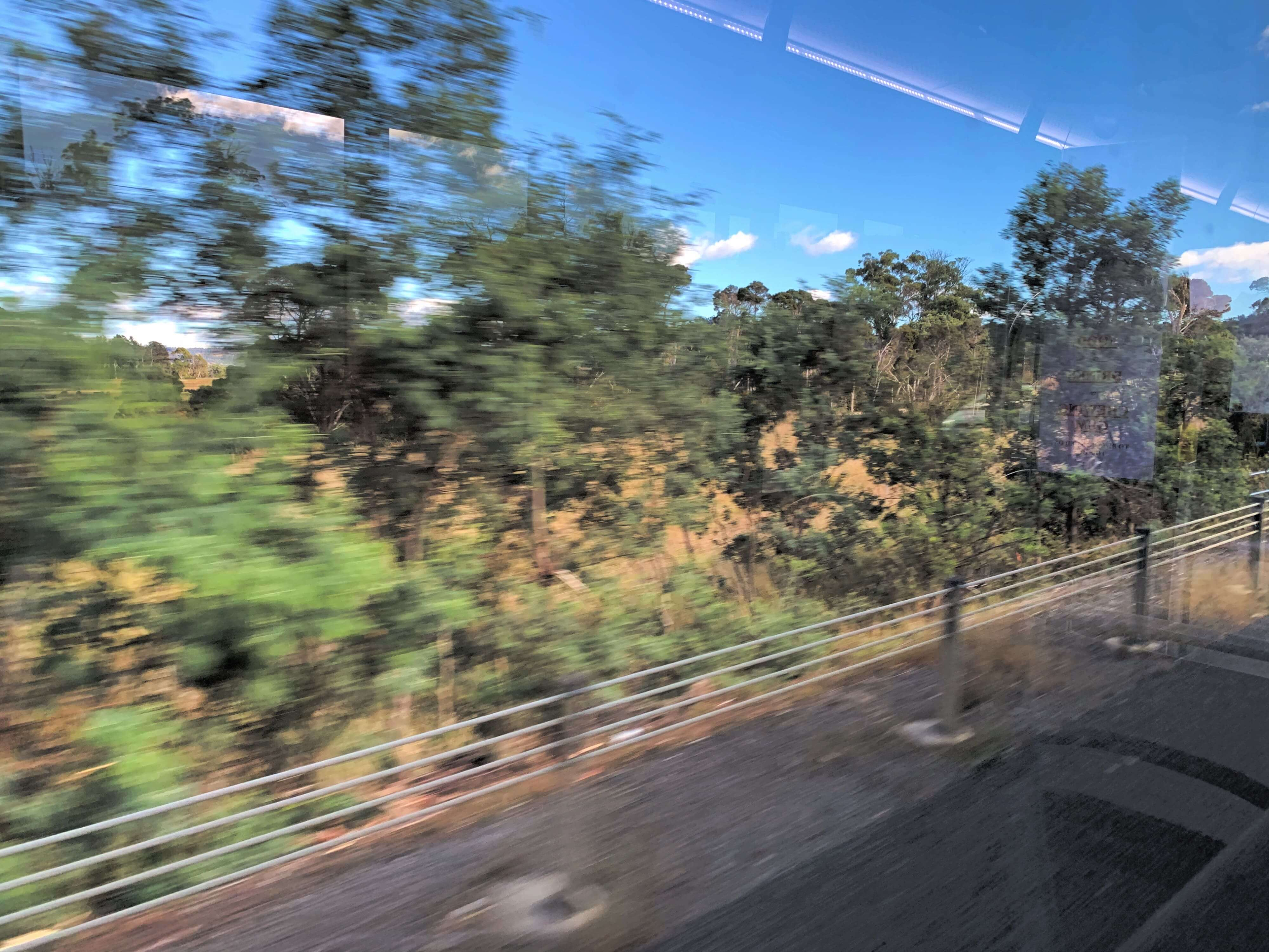 blurry image of trees passing by as seen from inside a moving bus
