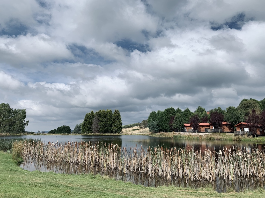 Photo of an artificial lake with water plants with a view of fern trees and holiday cottages in the distance. As seen from a golf course within the resort. Grindelwald Village, Tasmania
