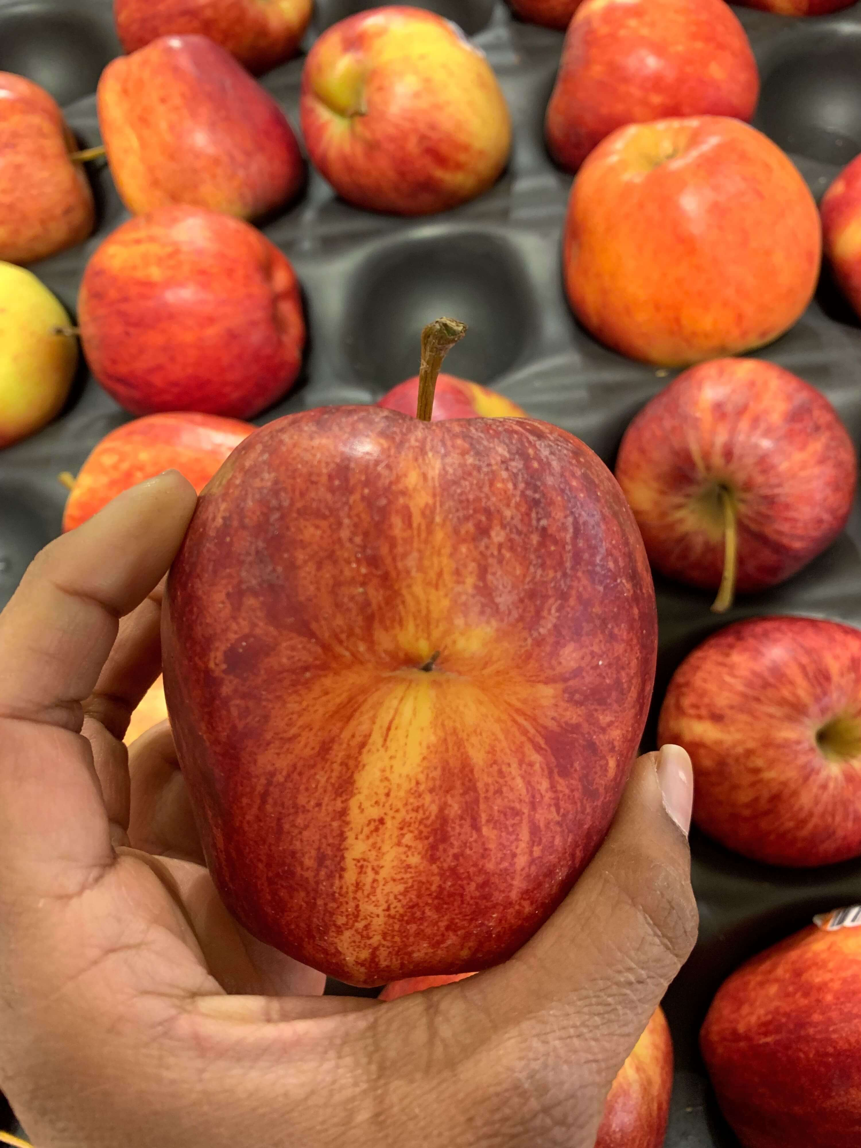 closeup photo of a disfigured red gala apple